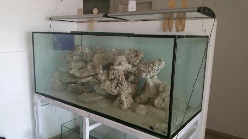 ארון לאקווריום פורמייקה